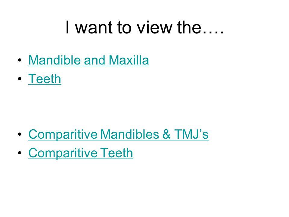 I want to view the…. Mandible and Maxilla Teeth Comparitive Mandibles & TMJs Comparitive Teeth