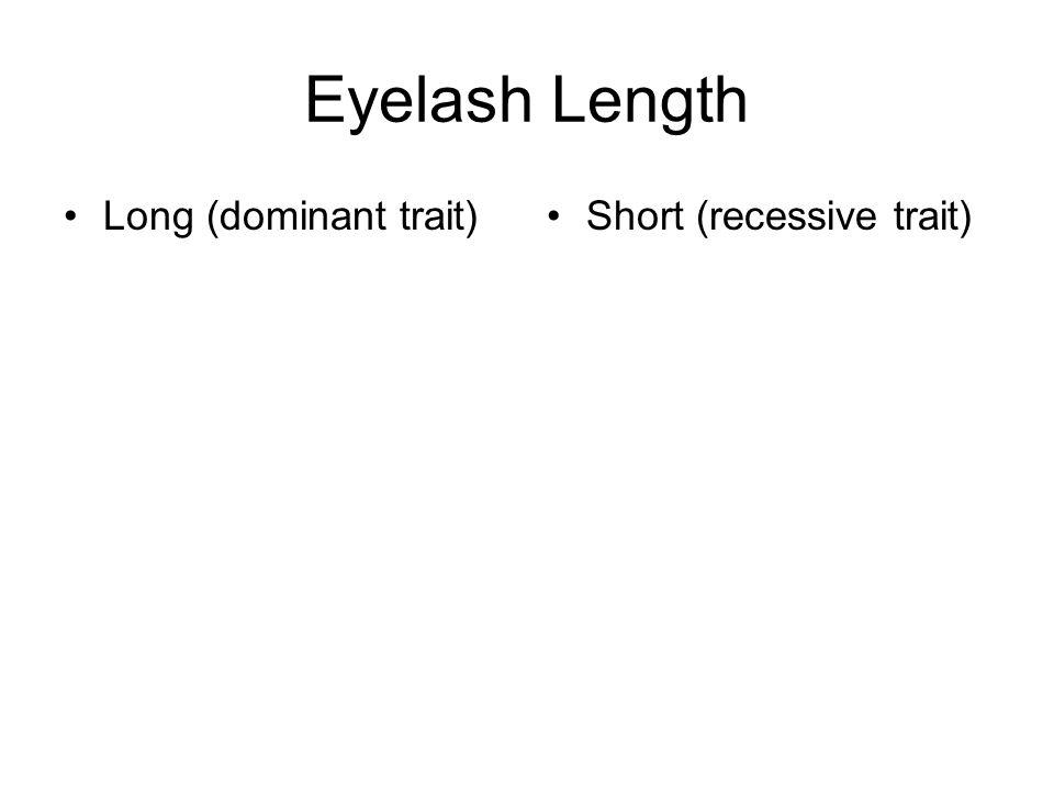 Eyelash Length Long (dominant trait)Short (recessive trait)