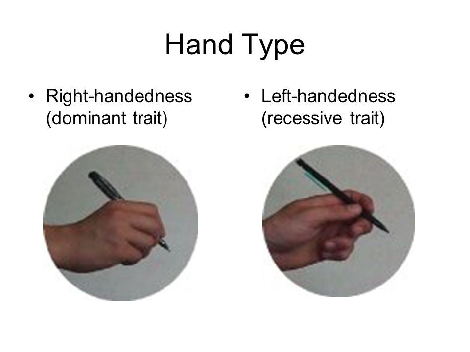 Hand Type Right-handedness (dominant trait) Left-handedness (recessive trait)