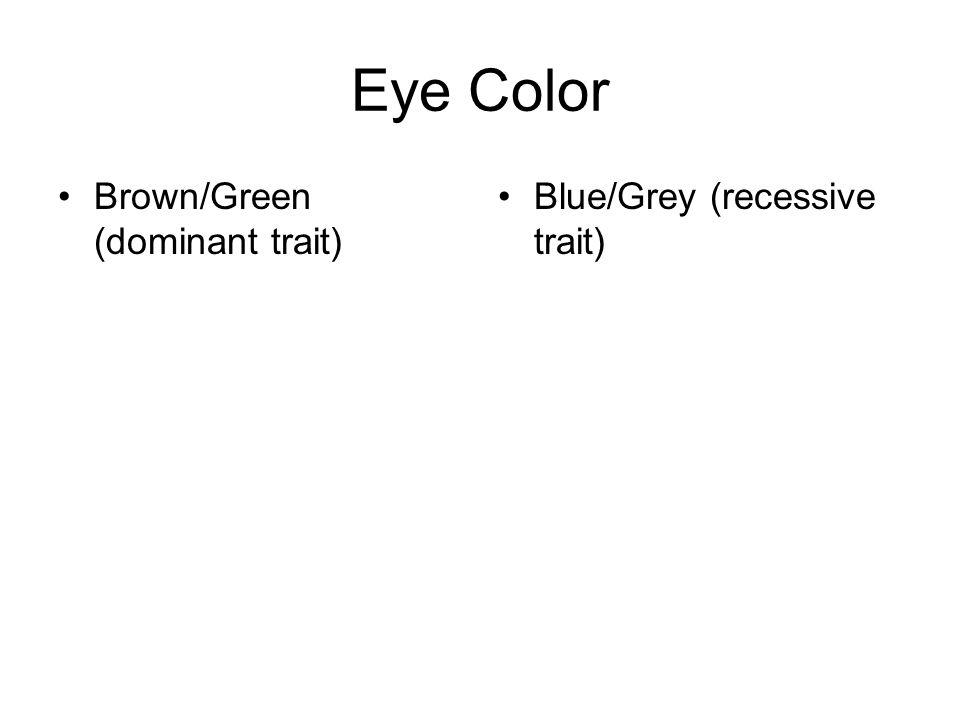 Eye Color Brown/Green (dominant trait) Blue/Grey (recessive trait)