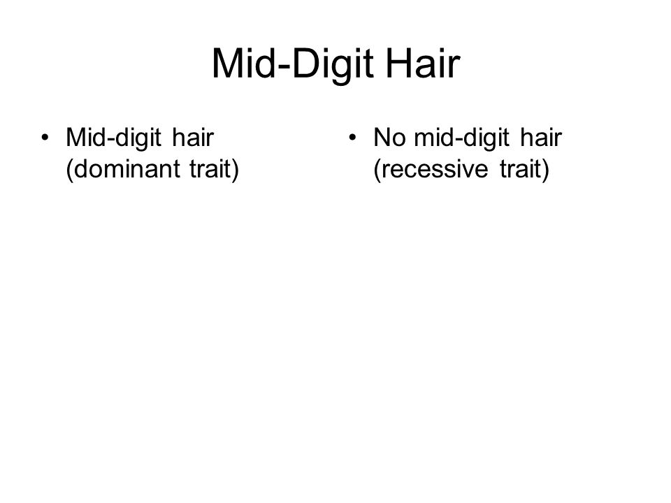 Mid-Digit Hair Mid-digit hair (dominant trait) No mid-digit hair (recessive trait)
