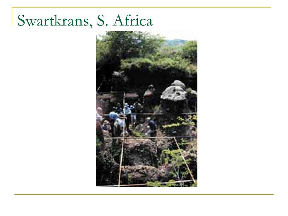 Swartkrans, S. Africa