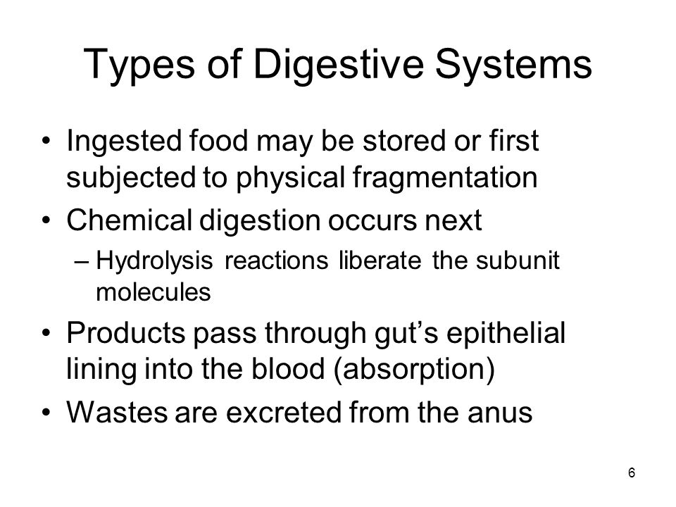 Vertebrate Digestive Systems Consists of a tubular gastrointestinal tract and accessory organs Mouth and pharynx – entry Esophagus – delivers food to stomach Stomach – preliminary digestion Small intestine – digestion and absorption Large intestine – absorption of water and minerals Cloaca or rectum – expel waste 7