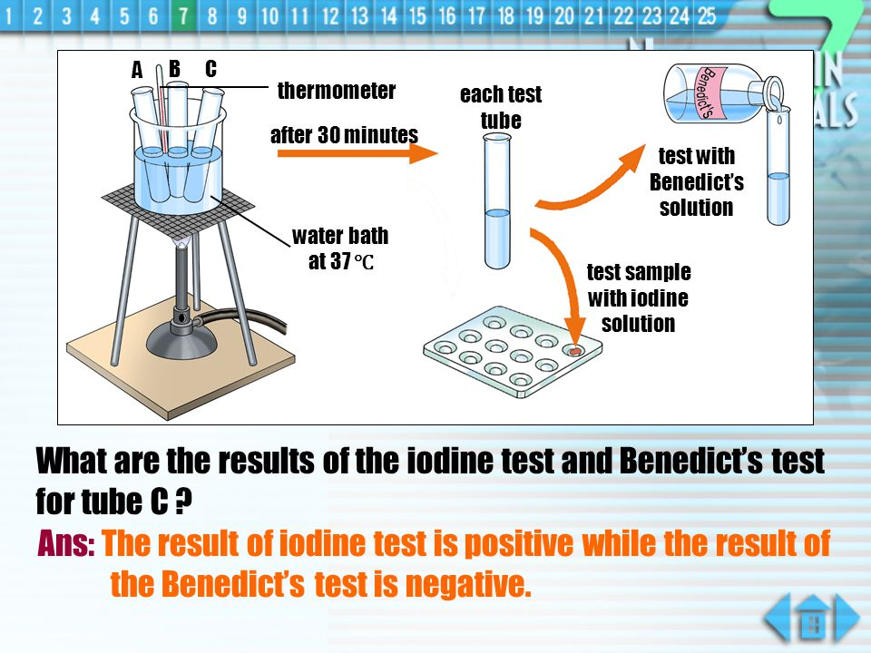 What are the results of the iodine test and Benedicts test for tube B .