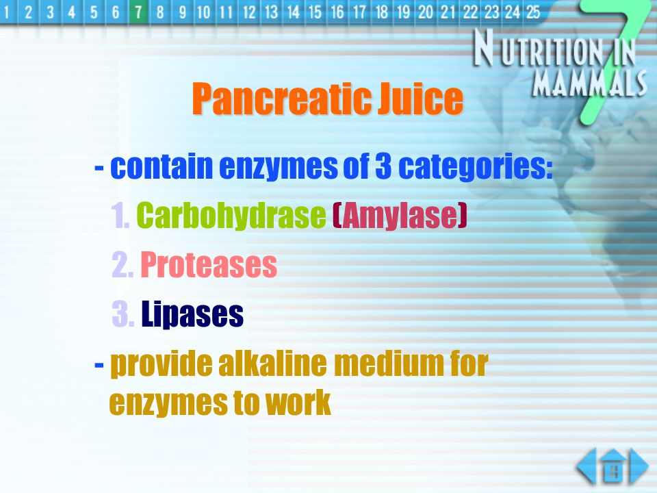 Pancreatic Juice produced in pancreas action in duodenum Pancreas Duodenum