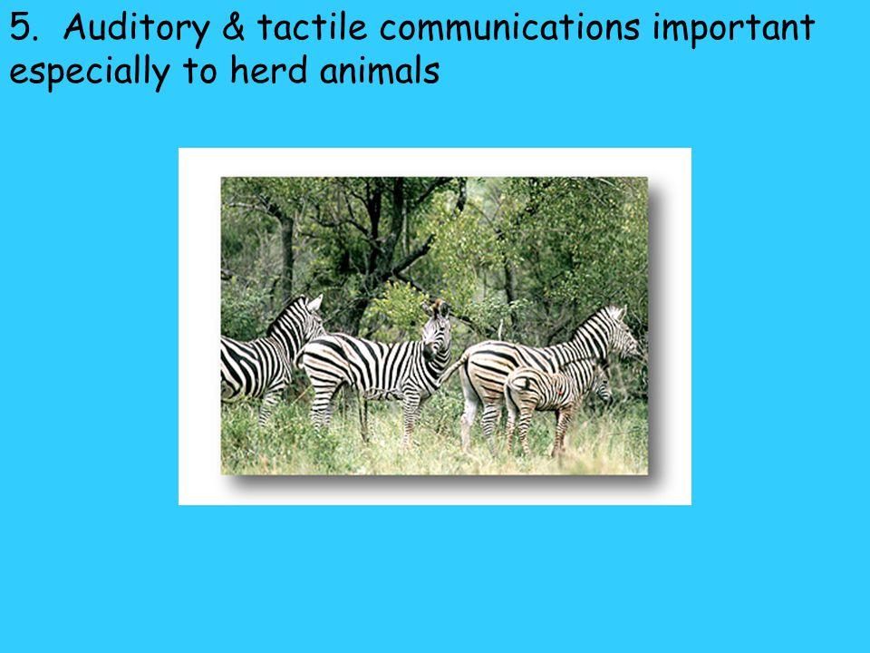 4. Pheromones- used to: A.Recognize members of same species B.Attract mate C.Establish territories D.Recognize parents