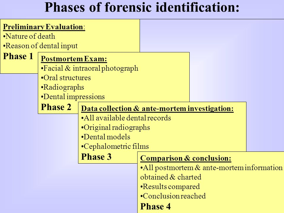 Phases of forensic identification: Preliminary Evaluation: Nature of death Reason of dental input Phase 1 Postmortem Exam: Facial & intraoral photograph Oral structures Radiographs Dental impressions Phase 2 Data collection & ante-mortem investigation: All available dental records Original radiographs Dental models Cephalometric films Phase 3 Comparison & conclusion: All postmortem & ante-mortem information obtained & charted Results compared Conclusion reached Phase 4