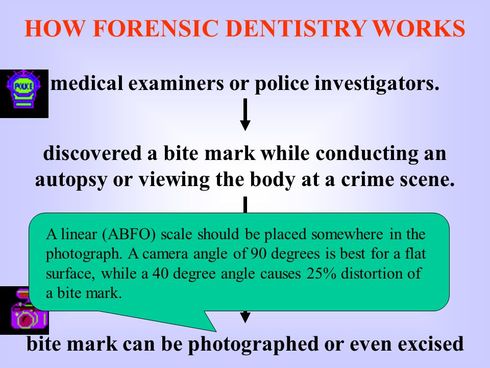 HOW FORENSIC DENTISTRY WORKS medical examiners or police investigators.