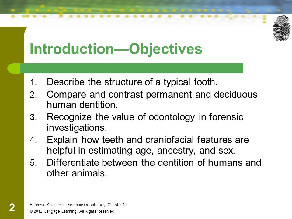 23 Forensic Science II: Forensic Odontology, Chapter 11 © 2012 Cengage Learning.