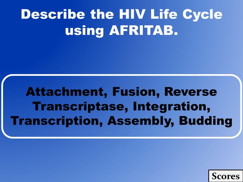 Describe the HIV Life Cycle using AFRITAB. Attachment, Fusion, Reverse Transcriptase, Integration, Transcription, Assembly, Budding Scores