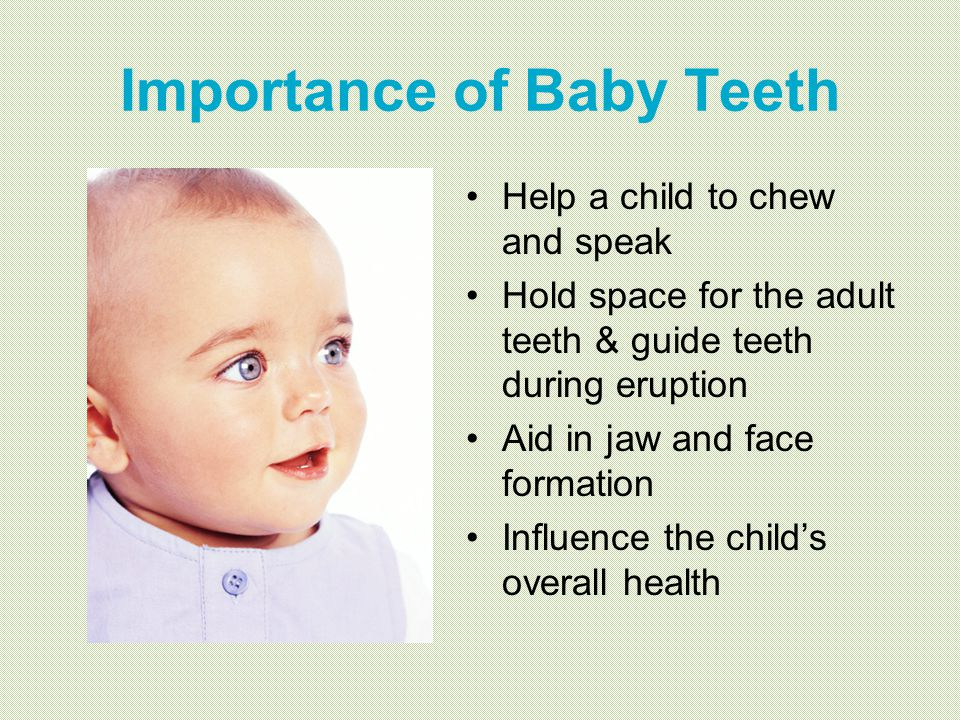 Importance of Baby Teeth Help a child to chew and speak Hold space for the adult teeth & guide teeth during eruption Aid in jaw and face formation Inf