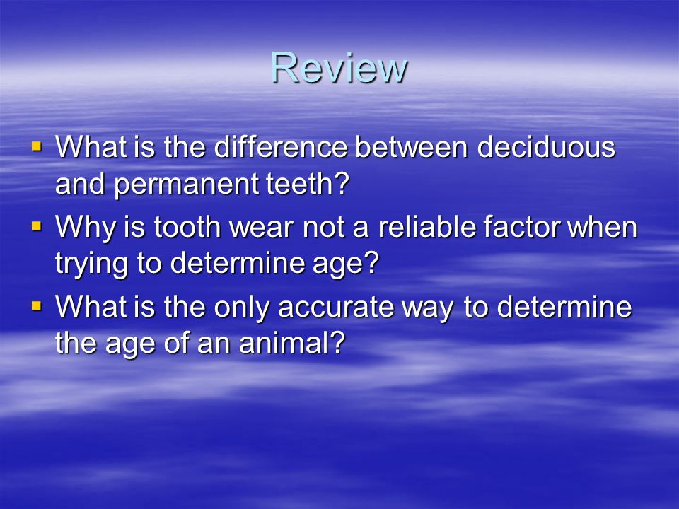 Review What is the difference between deciduous and permanent teeth? What is the difference between deciduous and permanent teeth? Why is tooth wear n