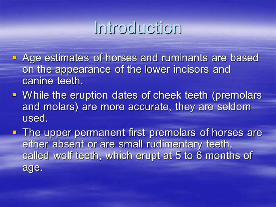 Introduction Age estimates of horses and ruminants are based on the appearance of the lower incisors and canine teeth. Age estimates of horses and rum
