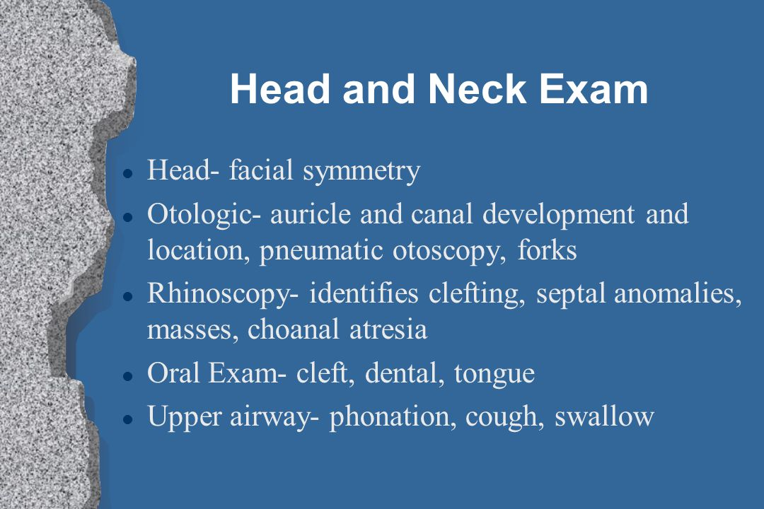 Head and Neck Exam l Head- facial symmetry l Otologic- auricle and canal development and location, pneumatic otoscopy, forks l Rhinoscopy- identifies