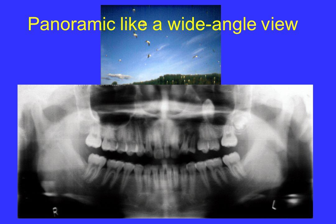 © l.m.brocklebank Panoramic like a wide-angle view