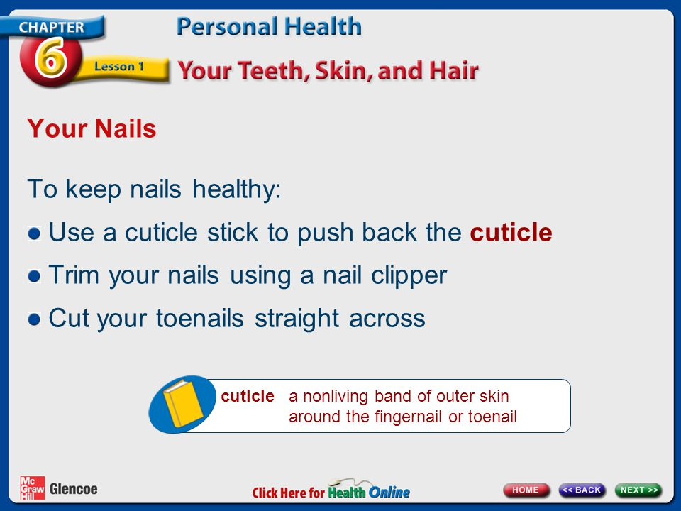 Your Nails To keep nails healthy: Use a cuticle stick to push back the cuticle Trim your nails using a nail clipper Cut your toenails straight across cuticle a nonliving band of outer skin around the fingernail or toenail
