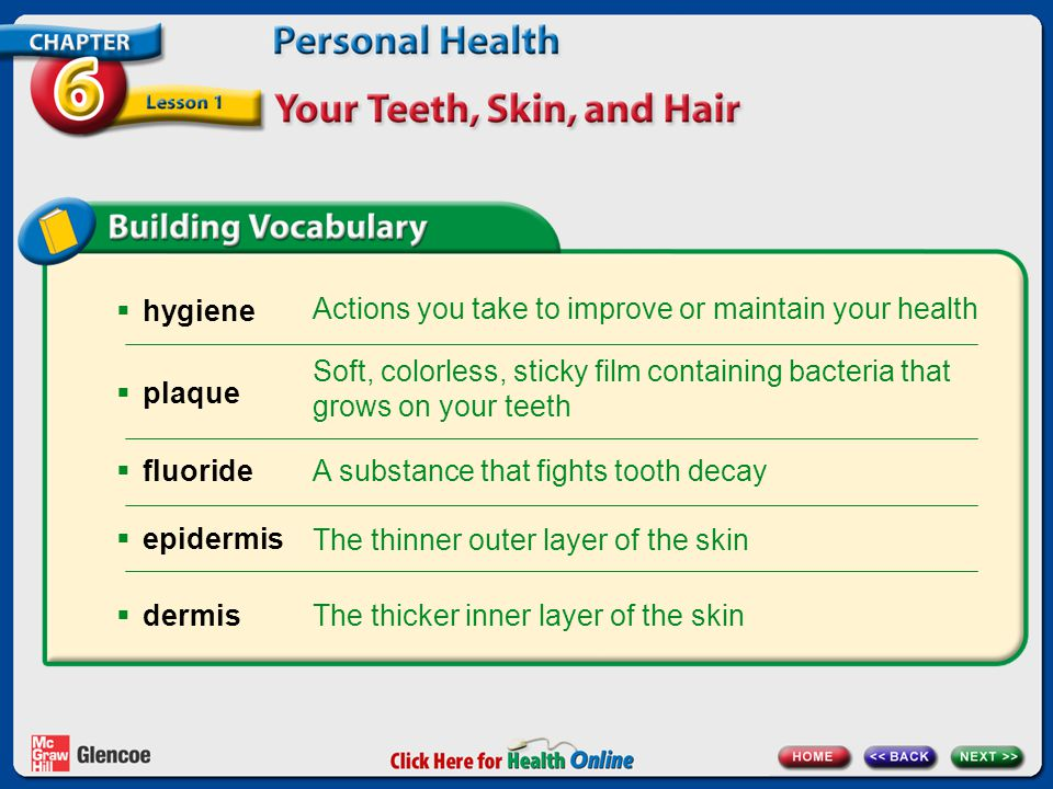 Actions you take to improve or maintain your health Soft, colorless, sticky film containing bacteria that grows on your teeth A substance that fights tooth decay The thicker inner layer of the skin The thinner outer layer of the skin hygiene plaque fluoride epidermis dermis