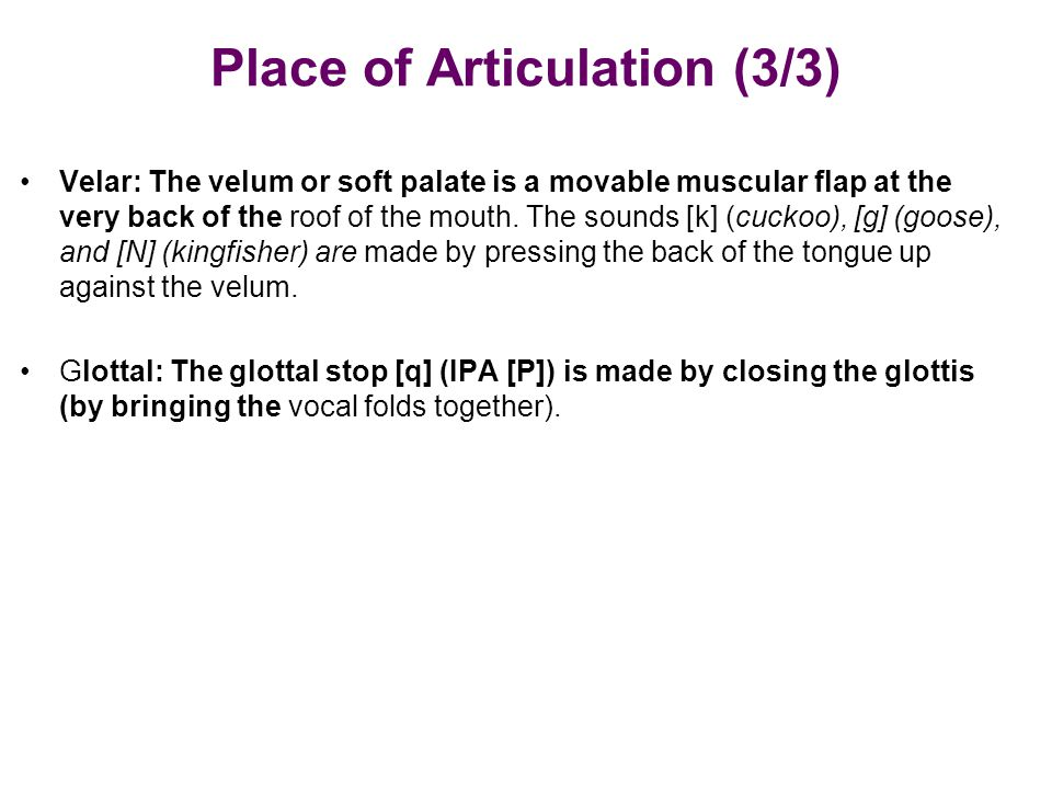 Place of Articulation (3/3) Velar: The velum or soft palate is a movable muscular flap at the very back of the roof of the mouth. The sounds [k] (cuck