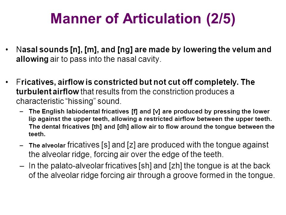 Manner of Articulation (2/5) Nasal sounds [n], [m], and [ng] are made by lowering the velum and allowing air to pass into the nasal cavity. Fricatives