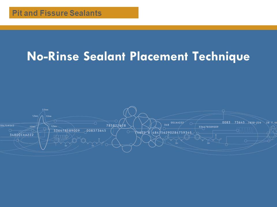 No-Rinse Sealant Placement Technique Pit and Fissure Sealants