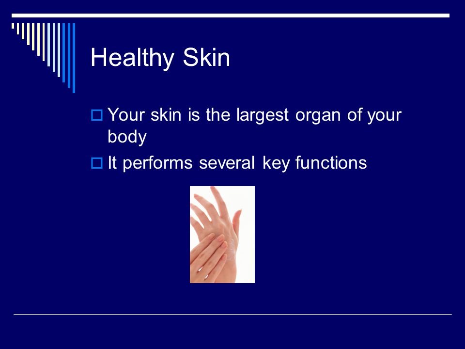 Healthy Skin Your skin is the largest organ of your body It performs several key functions