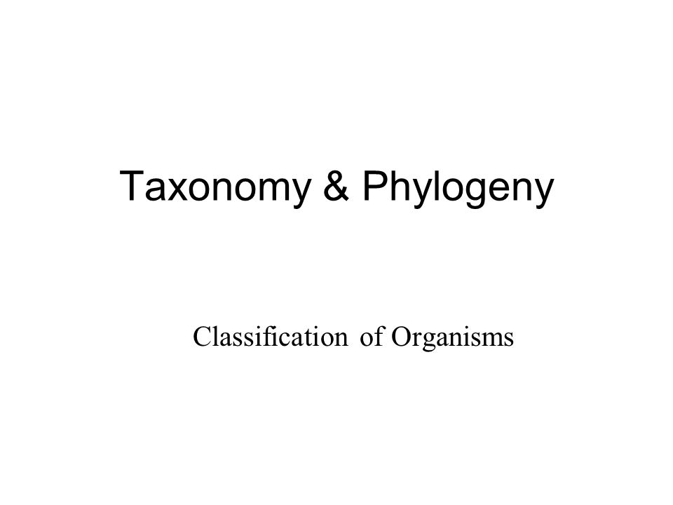 Taxonomy & Phylogeny Classification of Organisms