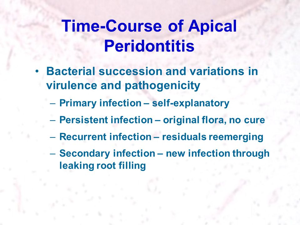 Time-Course of Apical Peridontitis Bacterial succession and variations in virulence and pathogenicity –Primary infection – self-explanatory –Persisten