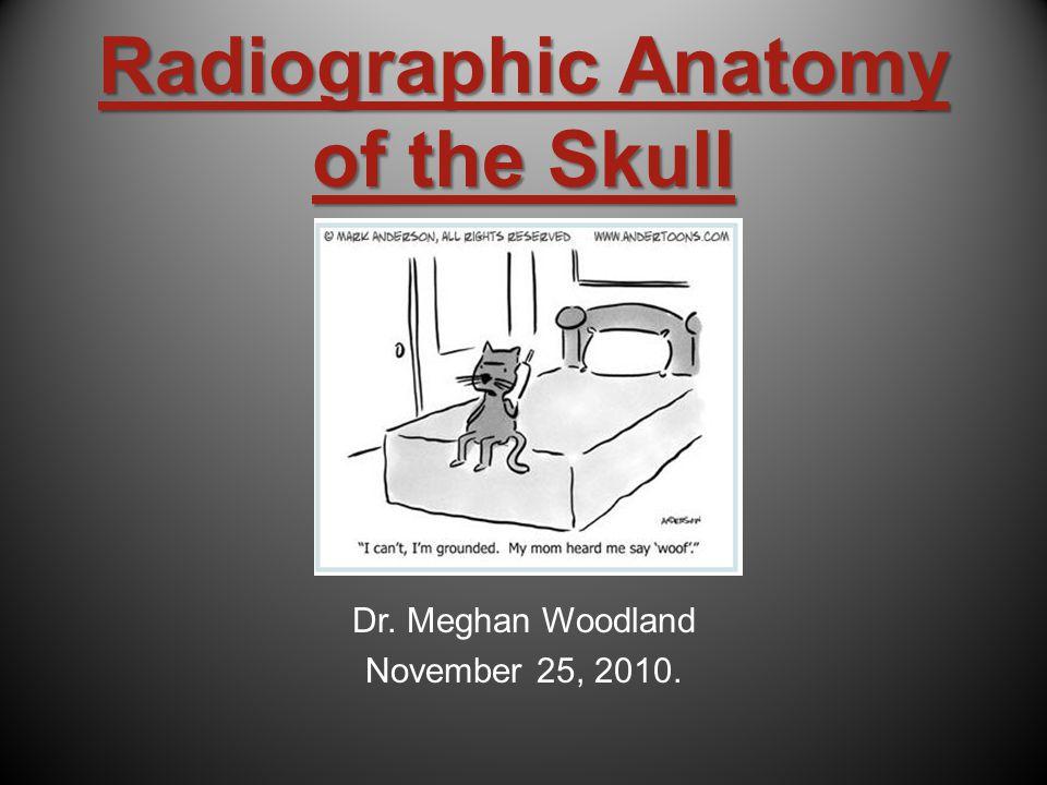 Radiographic Anatomy of the Skull Dr. Meghan Woodland November 25, 2010.