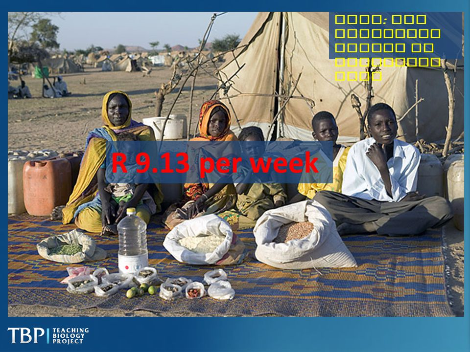 Chad : The Aboubakar family of Breidjing Camp R 9.13 per week