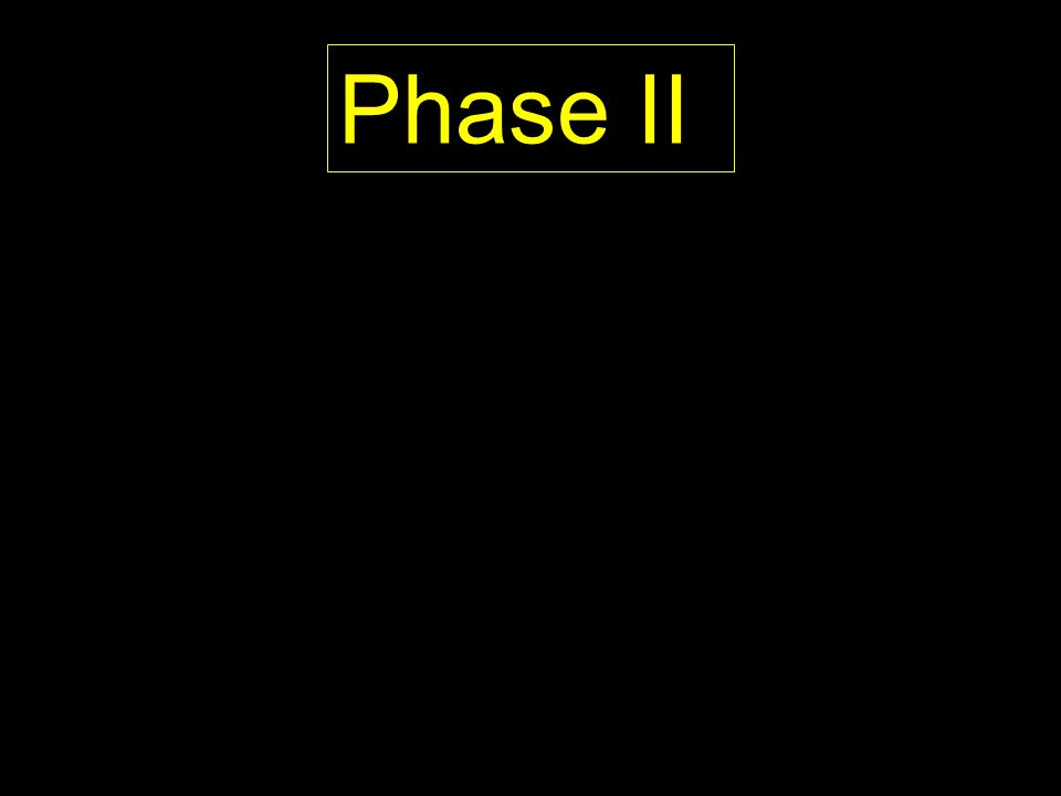 Phase II PROPOSED