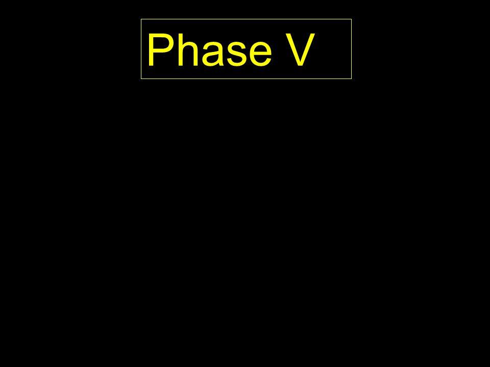 Phase V PROPOSED