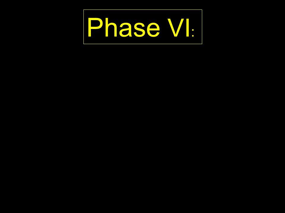 Phase VI :