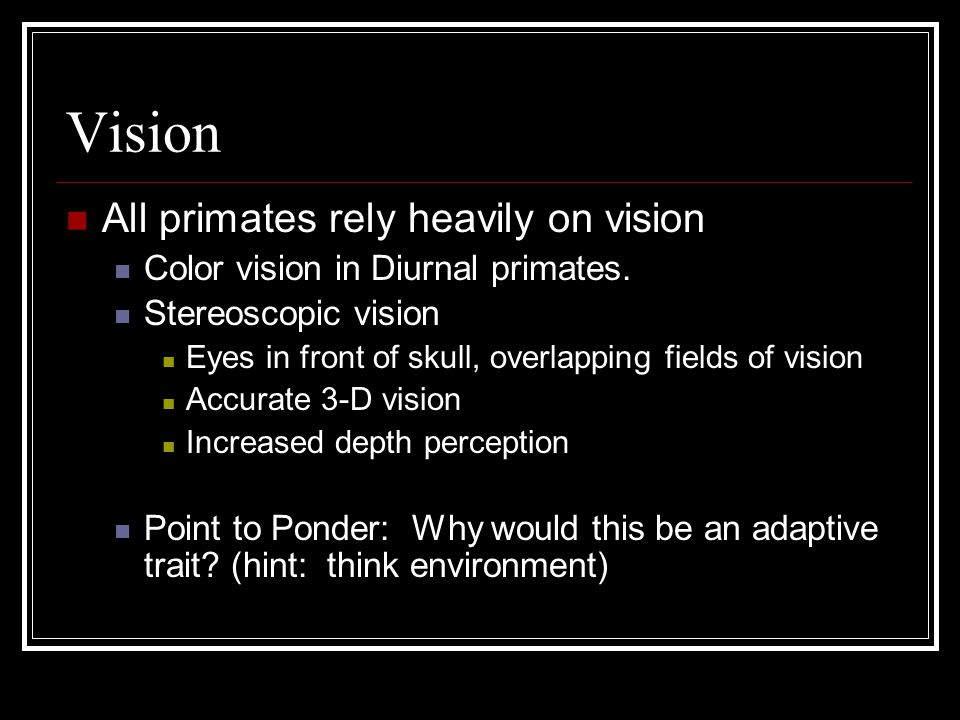 Vision All primates rely heavily on vision Color vision in Diurnal primates.