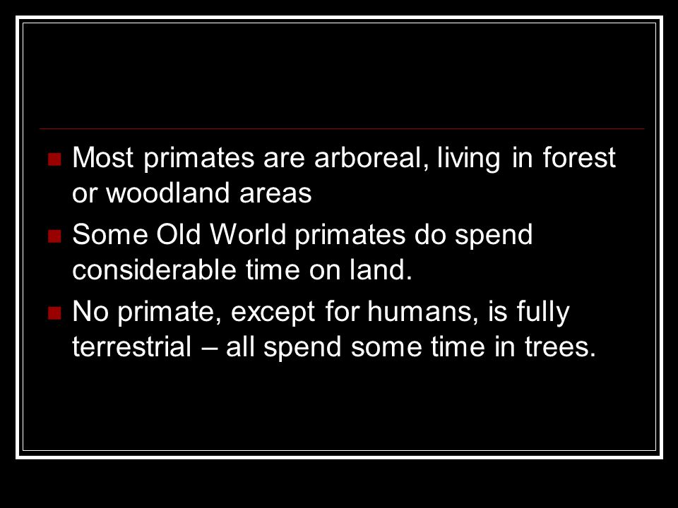 Most primates are arboreal, living in forest or woodland areas Some Old World primates do spend considerable time on land.