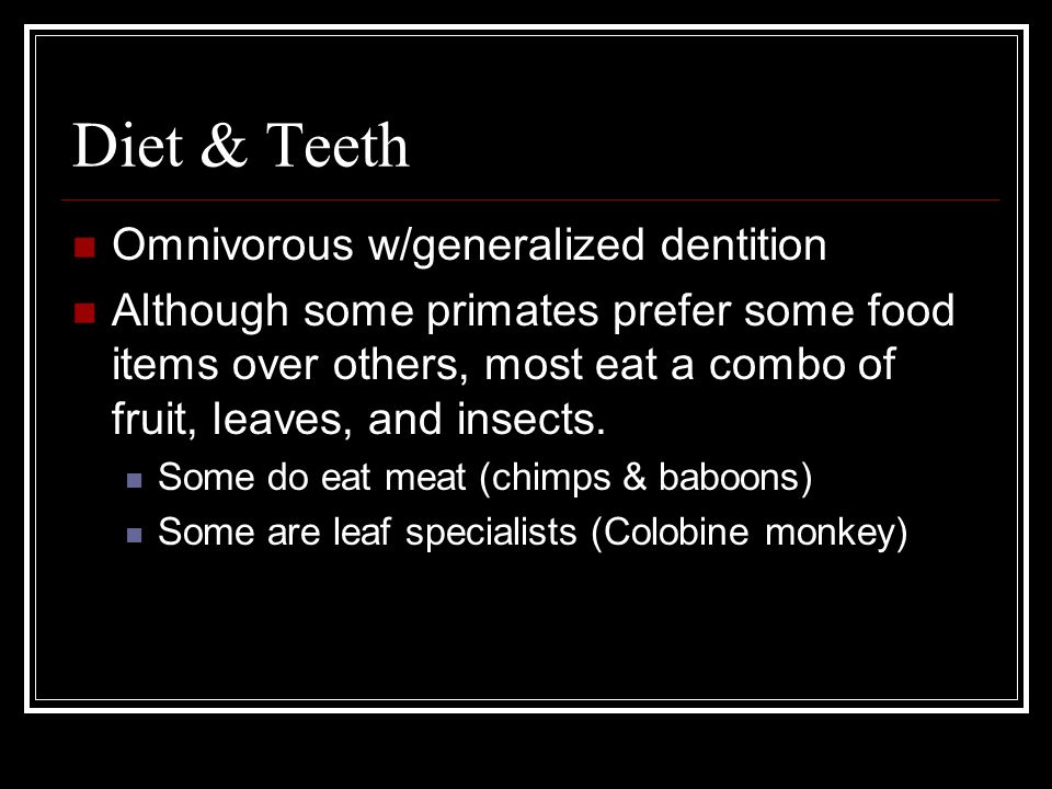Diet & Teeth Omnivorous w/generalized dentition Although some primates prefer some food items over others, most eat a combo of fruit, leaves, and insects.