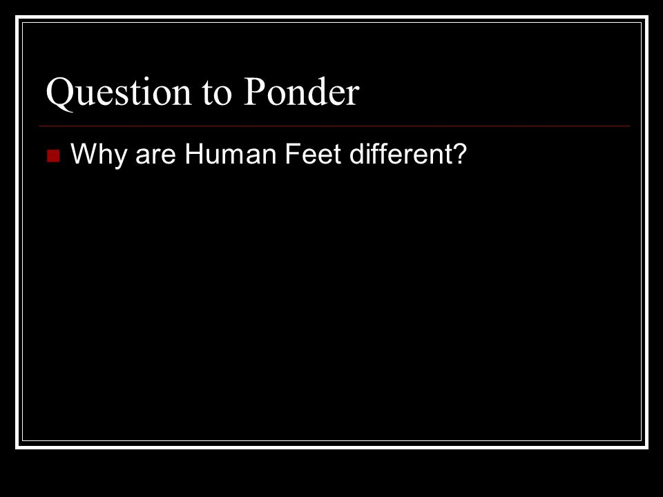 Question to Ponder Why are Human Feet different?