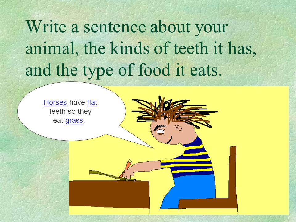 Write a sentence about your animal, the kinds of teeth it has, and the type of food it eats. Horses have flat teeth so they eat grass.