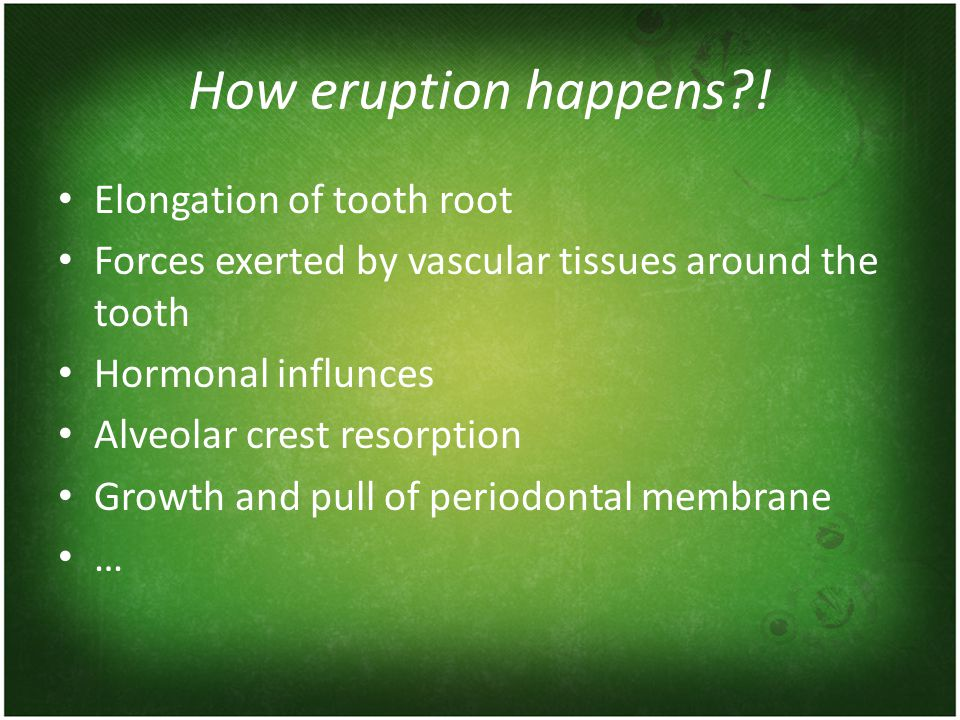How eruption happens?! Elongation of tooth root Forces exerted by vascular tissues around the tooth Hormonal influnces Alveolar crest resorption Growt
