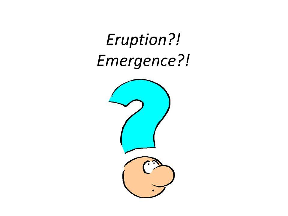 Eruption?! Emergence?!