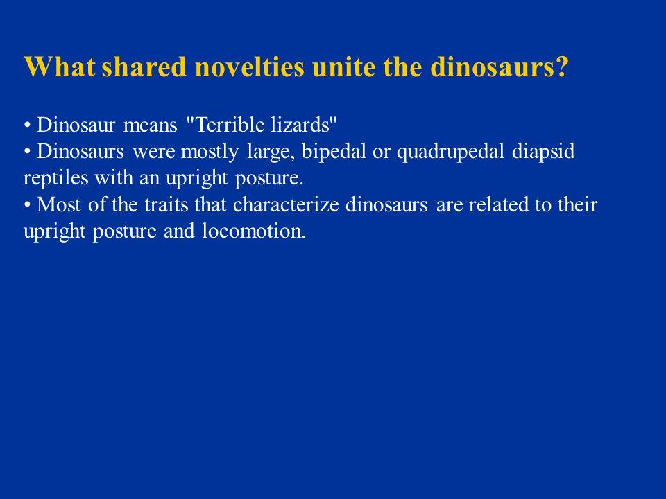 What shared novelties unite the dinosaurs? Dinosaur means