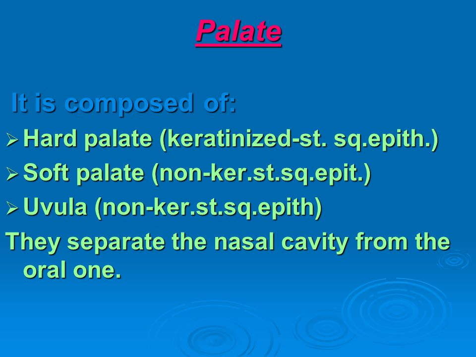 Palate It is composed of: It is composed of: Hard palate (keratinized-st. sq.epith.) Hard palate (keratinized-st. sq.epith.) Soft palate (non-ker.st.s