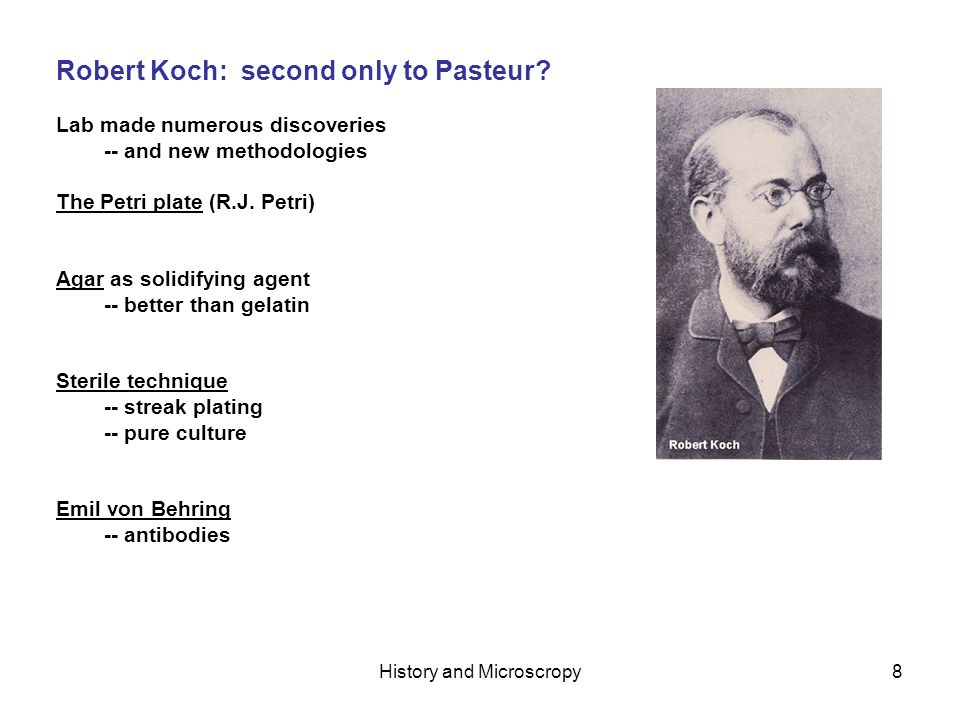 History and Microscropy8 Robert Koch: second only to Pasteur.