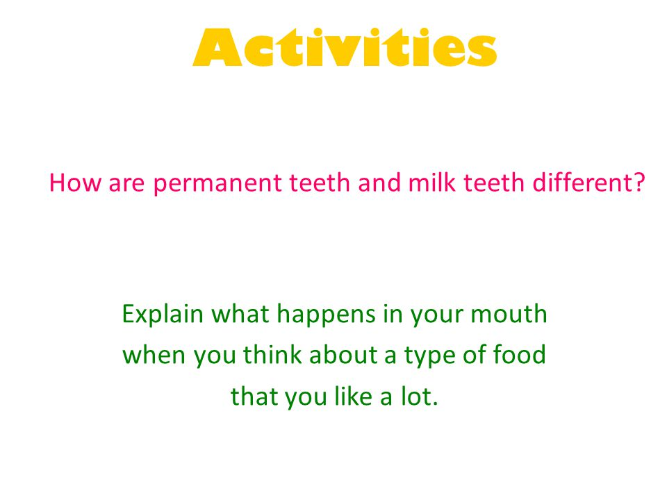 Activities How are permanent teeth and milk teeth different? Explain what happens in your mouth when you think about a type of food that you like a lo