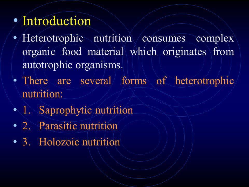Chapter 15 Heterotrophic Nutrition