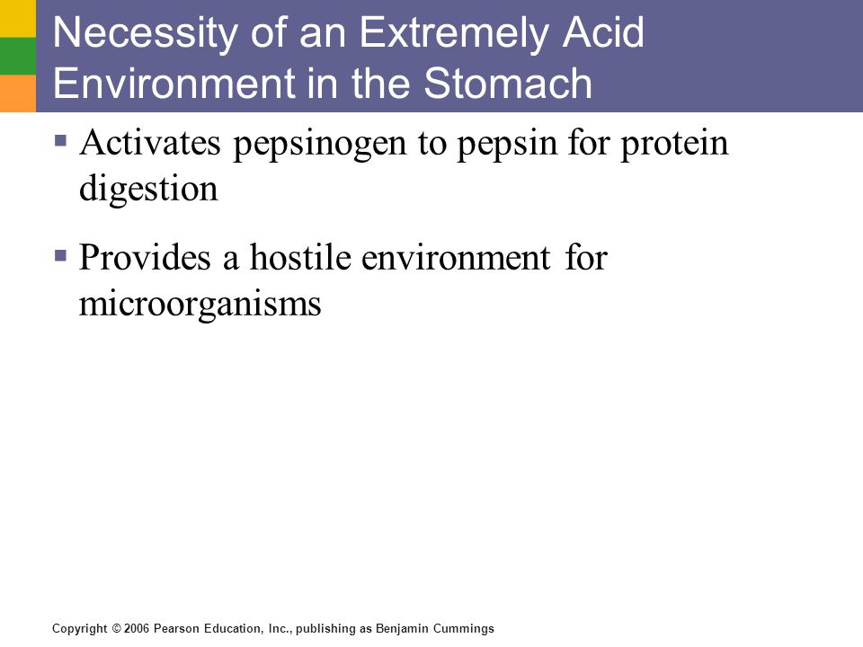 Copyright © 2006 Pearson Education, Inc., publishing as Benjamin Cummings Necessity of an Extremely Acid Environment in the Stomach Activates pepsinogen to pepsin for protein digestion Provides a hostile environment for microorganisms