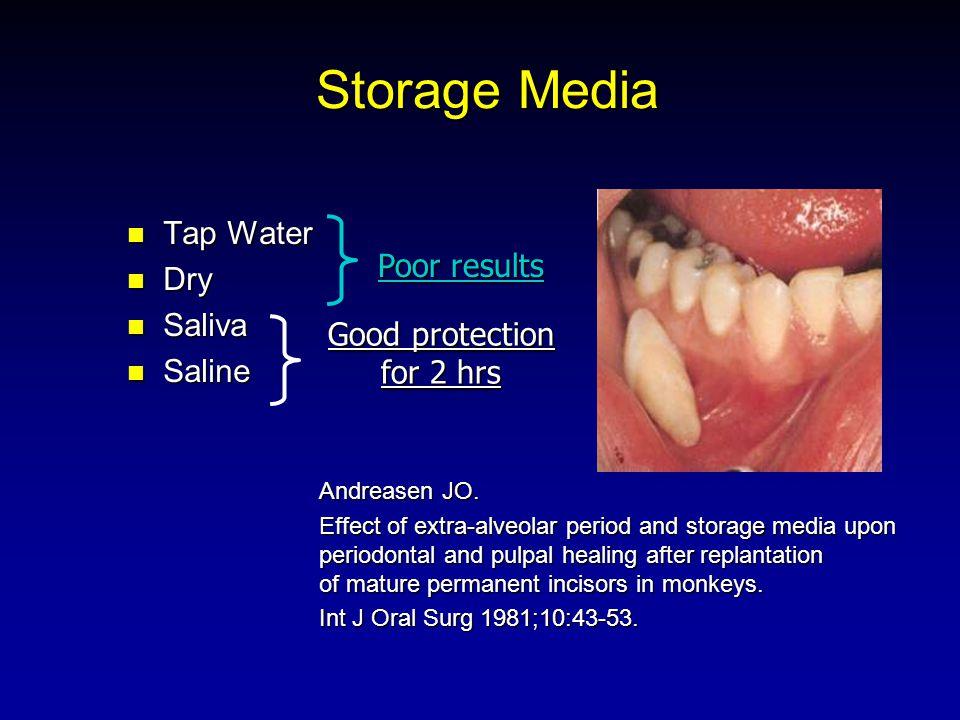 Storage Media Tap Water Tap Water Dry Dry Saliva Saliva Saline Saline Andreasen JO. Effect of extra-alveolar period and storage media upon periodontal