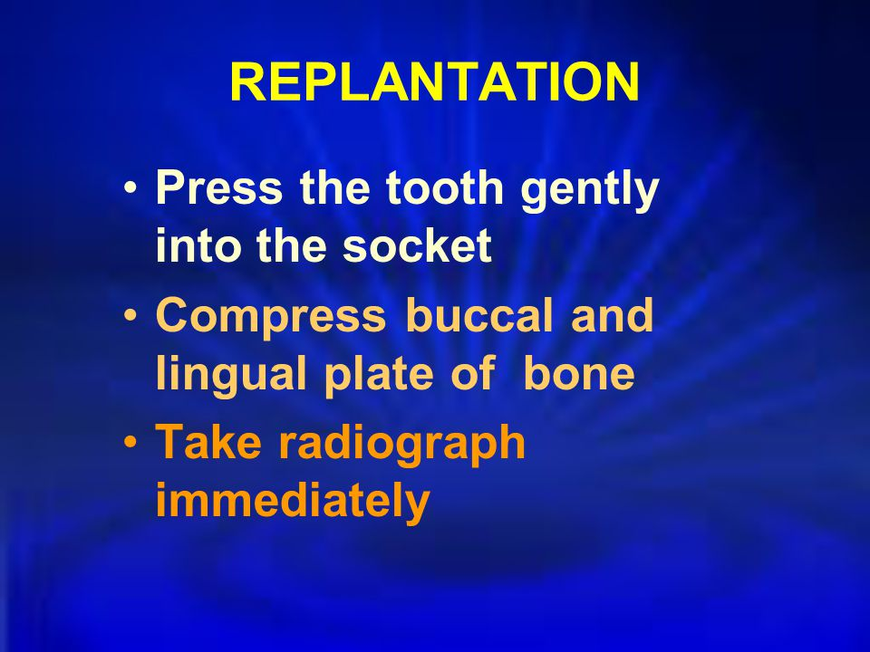 REPLANTATION Press the tooth gently into the socket Compress buccal and lingual plate of bone Take radiograph immediately