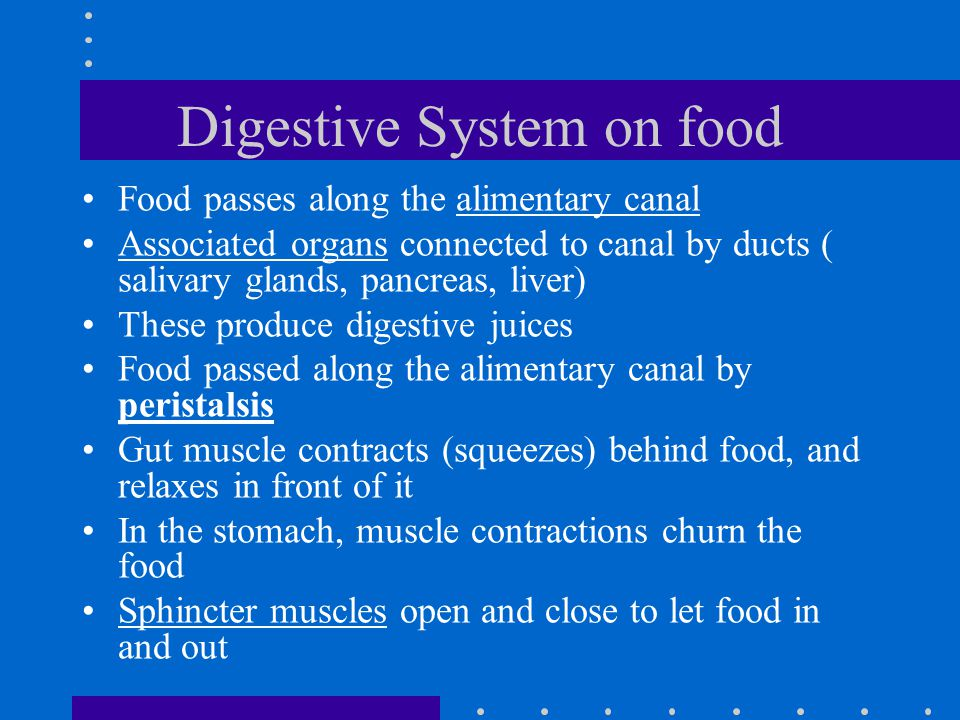 Digestive System on food Food passes along the alimentary canal Associated organs connected to canal by ducts ( salivary glands, pancreas, liver) Thes