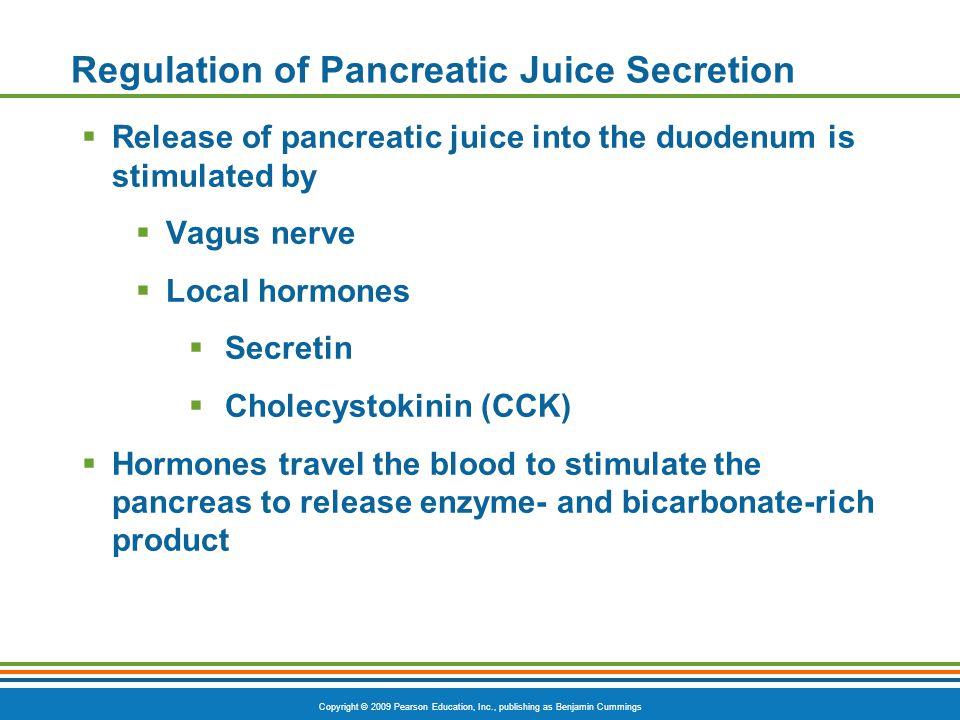Copyright © 2009 Pearson Education, Inc., publishing as Benjamin Cummings Regulation of Pancreatic Juice Secretion Release of pancreatic juice into th