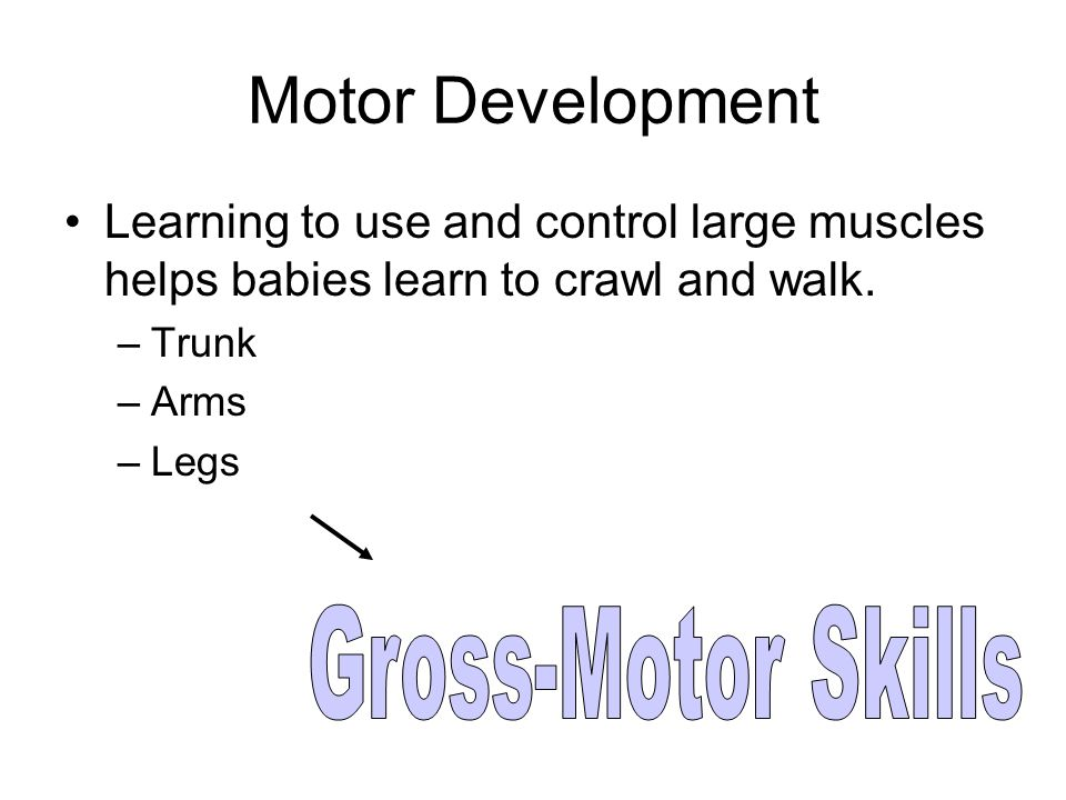 Motor Development Learning to use and control large muscles helps babies learn to crawl and walk.